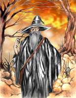 gandalf by nakfinal