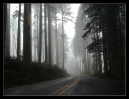 Misty Road by Quesoman