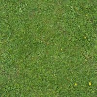Seamless Green Grass Texture 01 by goodtextures