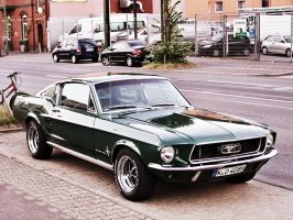 Ford Mustang by gardengrows