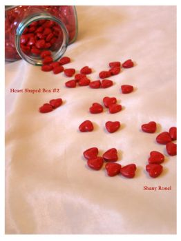 heart shaped box nm.2 by WontBeComingBack