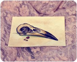 ACEO - Crow's Skull by alineboni