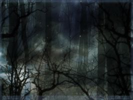 Wall - Surreal Woods by djsoblivion1990