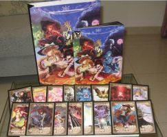 Touhou Attack Artbook Card Set by ChinAnime