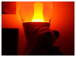 Bear With Lamp by rustkill