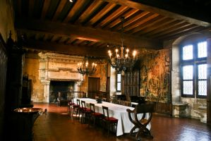 Langeais Castle D Room by Avaloniteaa
