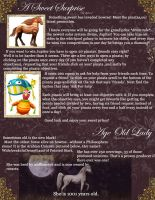 Howrse Newsletter June 6-11th Page Two by Thunderbolt-Designs