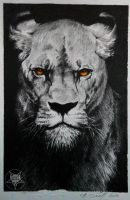 lion by AndreySkull