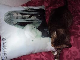 mah kitty loves Sephiroth by Revangelis