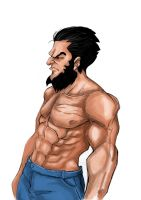 Wolverine by ozhora
