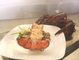Fidelio lobster in the dinner by Boltession