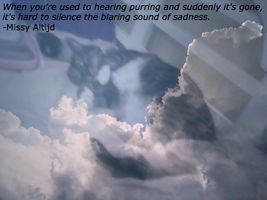 Used to Hearing Purring by JDLuvaSQEE