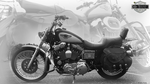 Michaels Hd 1998 Anv 95th Xl1200c by Thamyris71