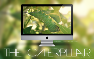 The Caterpillar wallpaper by HunabaKtu