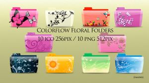 Colorflow Floral Folder by fandvd