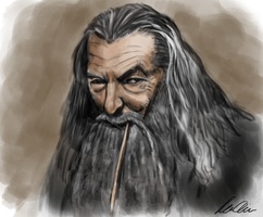 Gandalf the Grey by SaSemax