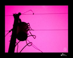 Transformer against PiNK Sky by amdillon