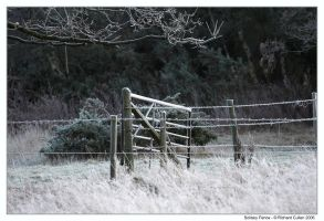 Solitary Fence by ClawzSkunk