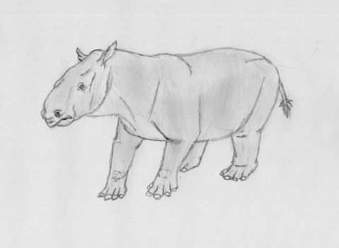 Colombitherium sketch by Zimices