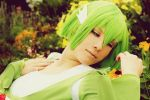 - Cosplay - Grow me a garden of coreflowers by SkyOfTheCenturies