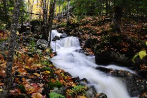 Fall falls 05 by wormwood58