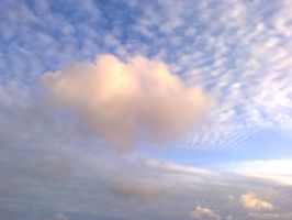 The Clouds and Me - 2015-04-24.1 by Kay-March