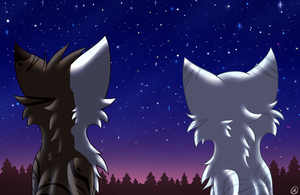 Star Gazers by MistDapple