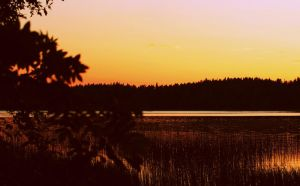 Time to say goodbye by kissamies