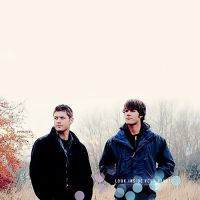 Winchesters by MarianaGaioto