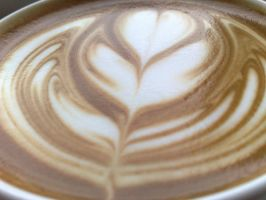 Coffee Art - Nice Tulip by davidr88