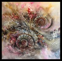 Ammonite ( still in progress ) by Amytea