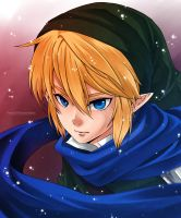 :Link: Hyrule Warriors by PrinceOfRedroses