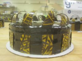 Congratulations Mousse Cake (side view) by recycledrapunzel