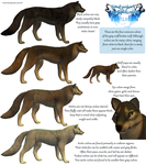 Guide to Realistic Wolves in FeralHeart (w/ mods!) by Mara-Elle