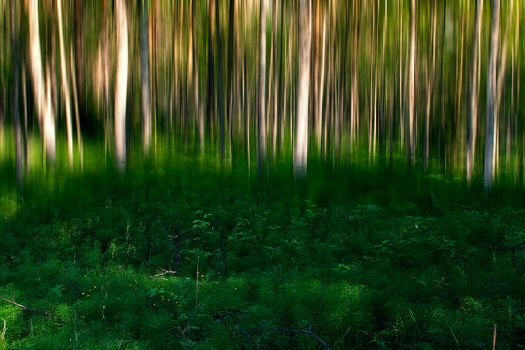 Motion blur by RobinHedberg