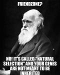 Natural Selection by TheFunnyAmerican