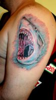 sharkie by 666afx