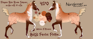 4170 foal design- BuD's Frolic Flame by GuardianOfJay