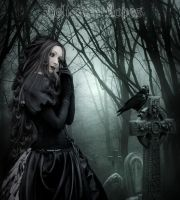 The beauty  gothic moonlight by Heliakin