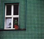 window with plant and green house by Nexu4