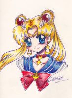 :: Sailormoon 2014 :: by oliko
