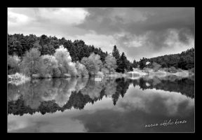 reflection black and white by pinkblue