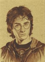 Harry Potter fourth year by Diarmaida