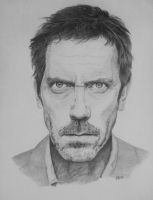 Hugh Laurie...Dr House by agespoom