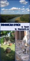Photo: Dominican Stock by ivelt-resources