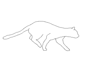Cat running animation by careas