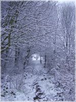 Winters Tunnel by LordShenlong