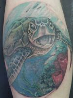 Duke's sea turtle by eternaltaco