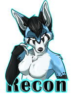 Recon Badge by AeroSocks
