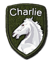 GS - Charlie Division by AdmiralSerenity